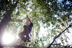 Footlock Aufstieg am Doppelseil - Busch Baumpflege
