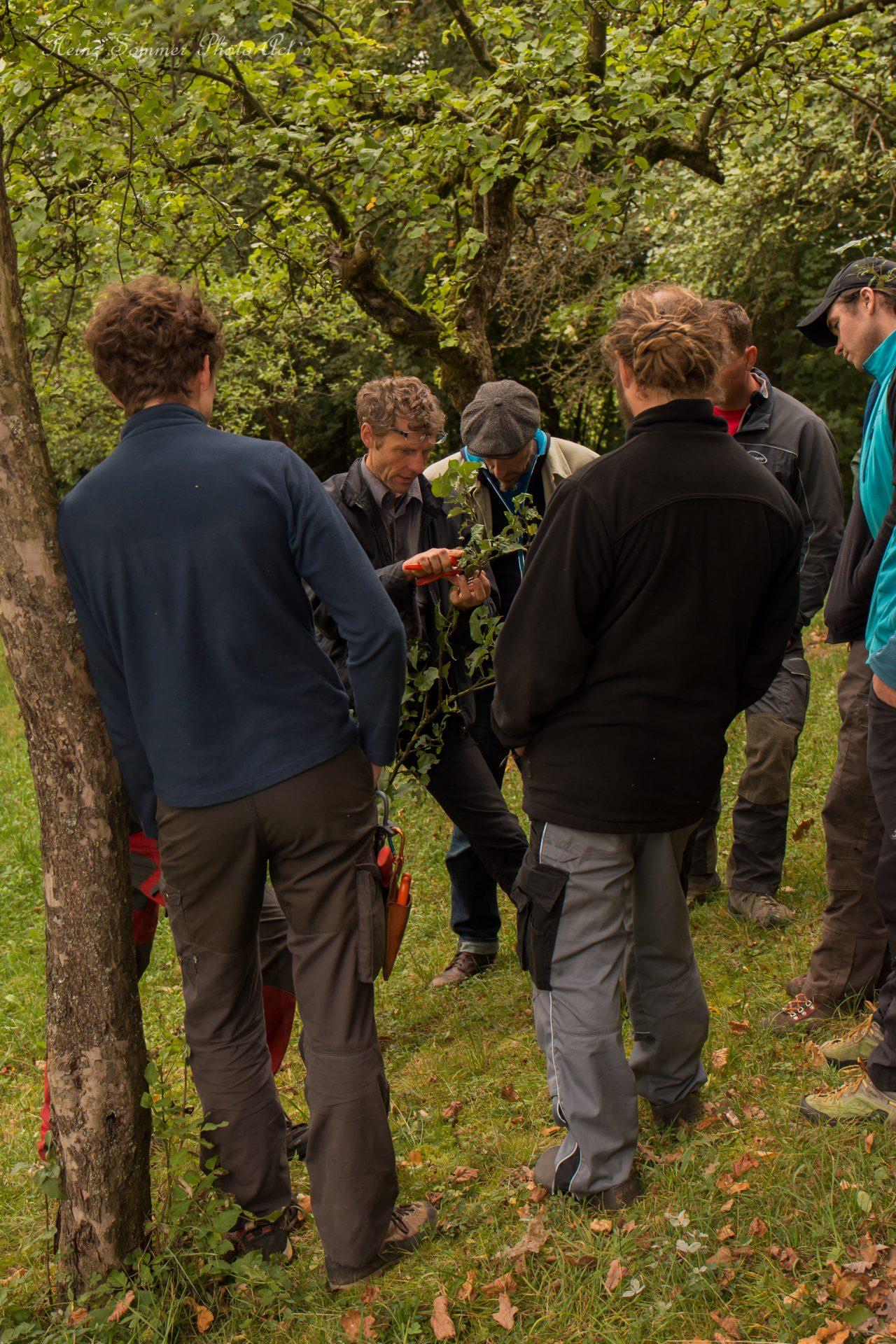 Kai Bergengrün zusammen mit Baumpflegern aus Bamberg - Busch Baumpflege