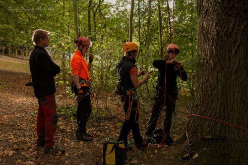 Baumkletterwochenende mit Rettungsübung beim St. Georgenbräu Keller in Buttenheim bei Bamberg - Busch Baumpflege
